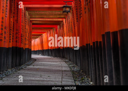 Fushimi Inari shrine in Kyoto, Japan - Stock Photo