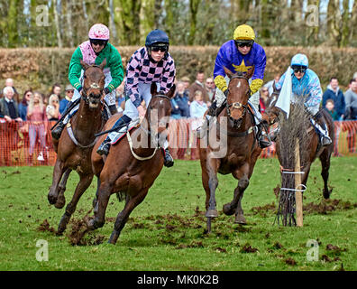 Four amateur jockeys riding bay hunters, galloping over soft ground whilst competing in a point-to-point event - Stock Photo