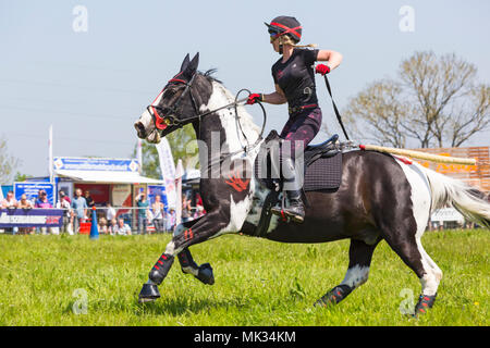 Female Event Rider And Horse Galloping From The Start Box