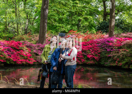 A group of ladies taking a selfie photo in front of the blooming azaleas at the Still Pond, Isabella Plantation, Richmond Park, Surrey, England - Stock Photo