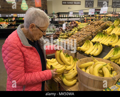 An elderly, gray-haired woman in a pink coat shopping for bananas in the fresh produce section of a market. - Stock Photo