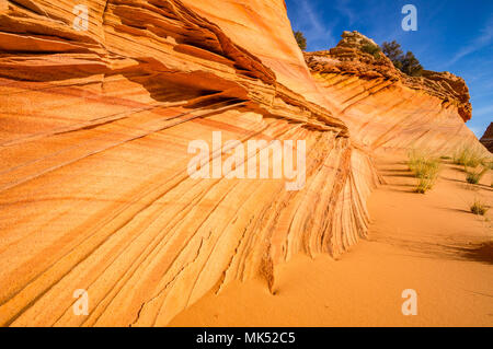 Colorful red and gold stripes in sandstone formations Cottonwood access area South Coyote Buttes Vermilion Cliffs National Monument Arizona USA - Stock Photo