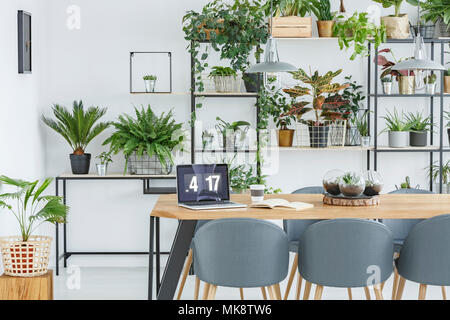 Grey chairs at wooden table with laptop in floral dining room interior with workspace - Stock Photo