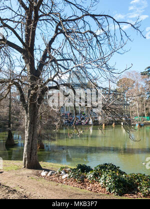 Madrid, Spain - January 27, 2018: Crystal Palace (Palacio de cristal) in Retiro Park in Madrid, Spain. Retiro Park is one of the largest parks of the  - Stock Photo