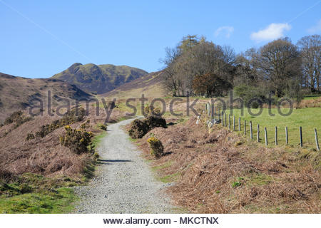 Causey Pike from the path up to Barrow Door, Lake District - Stock Photo