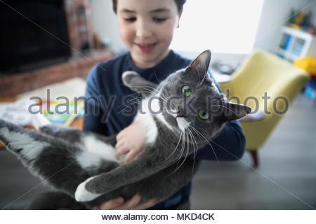 Portrait boy holding cute gray and white cat - Stock Photo