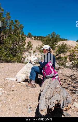 Female hiker with platinum colored Golden Retriever dogs pauses for a drink - Stock Photo