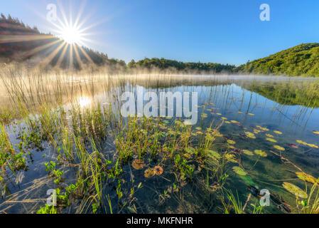 Sun and morning mist on Lake Ambleon, Jura, Bugey, Ain, France - Stock Photo