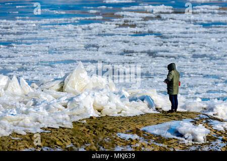 Ice floes on the banks of the Elbe in Kirch Werder, Hamburg, Germany, Europe, Eisschollen am Elbufer in Kirchwerder, Deutschland, Europa - Stock Photo