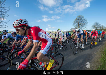 Male cyclists in peloton, competing in Tour de Yorkshire 2018 & racing on  flat, scenic, countryside lane near Ilkley, North Yorkshire, England, UK. - Stock Photo