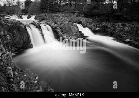 A long exposure black and white image of Low Force Waterfalls in Teesdale, North Pennines AONB - Stock Photo