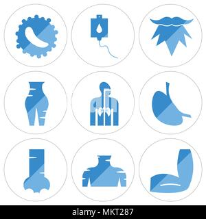 Set Of 9 simple editable icons such as Men Elbow, Human Neck, Nostril, Stomach with Liquids, Respiratory System, Female Pubis, Beard, Blood Transfusio - Stock Photo