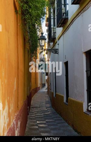 Calle Vida, Barrio de Santa Cruz, Sevilla, Andalusia, Spain: a pretty, narrow lane in the old Medieval quarter