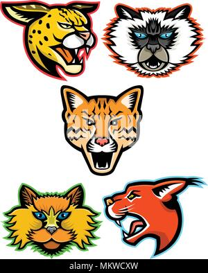 Sports mascot icon set of heads of wild and domestic cats like the serval, Himalayan cat, ocelot, Selkirk Rex cat and the caracal cat  viewed from sid - Stock Photo