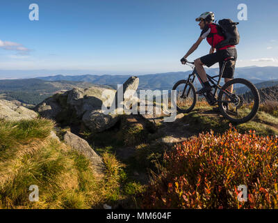 Mountain biker cycling on single trail on Ringelbuhlkopf, Alsace, France - Stock Photo
