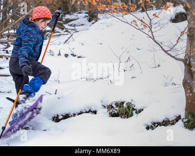 Girl snowshoeing in Black Forest, Germany, Europe - Stock Photo