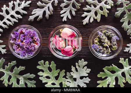 Bowls of Dried Lavender, Rose, and Sea Lavender with Dusty Miller, Aligned and Centered on Dark Table with Space for Copy - Stock Photo