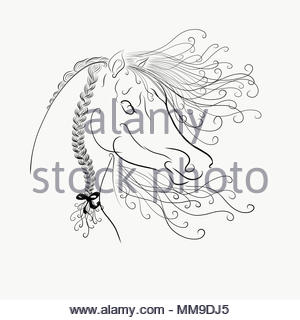coloring,The horse's head with a fluffy mane painted graceful lines with swirls - Stock Photo