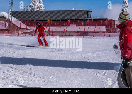 International Velocity races at the famous international ski resort of Sun Peaks in beautiful British Columbia, Canada - Stock Photo