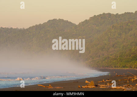 Carate Beach, Corcovado National Park, Osa Peninsula, Costa Rica, Centroamerica - Stock Photo
