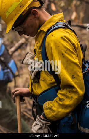 Forest Firefighters Putting Out The Embers Of A Forest Fire Spain Stock Photo Alamy