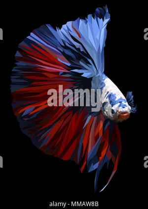 Polygon drawing of  betta or simese fighting fish illustation. - Stock Photo