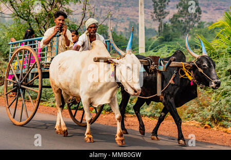 BADAMI, INDIA, MAR 18, 2018: Family rides in ox cart from fields to home, while man talks on cell phone - Stock Photo