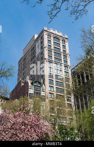 Architecture on Fifth Avenue is seen through Madison Square Park spring trees, NYC, USA - Stock Photo
