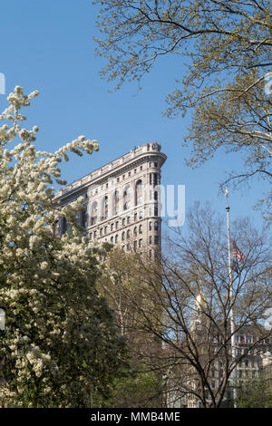 Springtime Blooming Trees in Madison Square Park Enhance the Historic Flatiron Building, New York City, USA - Stock Photo