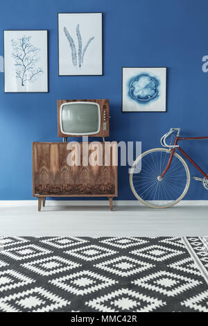 Black and white patterned carpet in blue and wooden living room