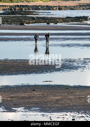 Longniddry Bents, Firth of Forth, East Lothian, Scotland, United Kingdom, 10th May 2018. UK Weather: Sunset this far North is well after 9.00pm at this time of year.  The sun is reflected in pools of water at low tide on the beach. The sandy beach is rippled. Two women walk on the beach, one of them carrying a child, as the sun begins to set - Stock Photo