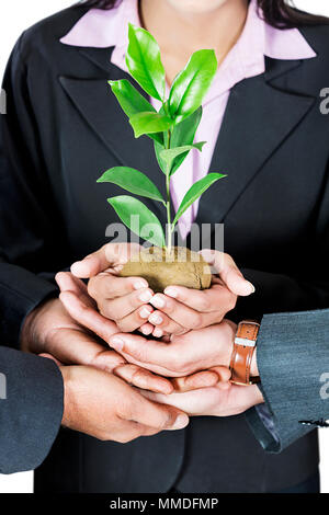Business People Colleague s Holding Plant saving world environment, tree-care Close-up - Stock Photo