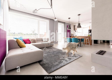 Spacious open plan modern living room interior with concrete fireplace, big comfortable sofa, dining space and kitchen - Stock Photo