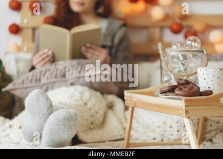 Chocolate gingerbread cookies and tea in mug on wooden tray - Stock Photo