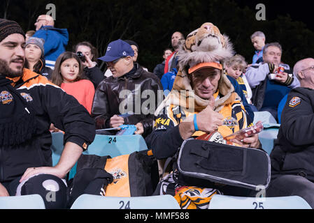 Rugby League supporters at the Sydney based Wests Tigers v North Queensland Cowboys game at Sydney's Leichhardt Oval on May 10th, 2018 in Australia - Stock Photo