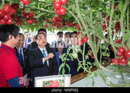Eniwa, Eniwa of Japan's northern island of Hokkaido. 11th May, 2018. Chinese Premier Li Keqiang, accompanied by Japanese Prime Minister Shinzo Abe, visits an ecological farm in Eniwa of Japan's northern island of Hokkaido, May 11, 2018. Credit: Li Tao/Xinhua/Alamy Live News - Stock Photo