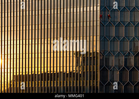 Two specialize window cleaners cleaning and washing a modern building window at DUO property in Singapore - Stock Photo