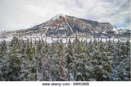 Crested Butte Mountain with fresh snow towers above snow covered pines. - Stock Photo