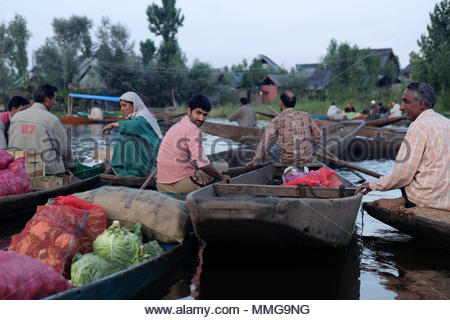 Every morning merchants and shoppers paddle to the floating market on Dal Lake in Srinagar. - Stock Photo