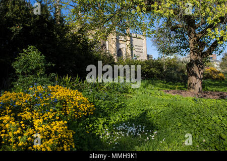 A view of the exterior of the Brighton Museum and Art Gallery through the foliage of the Royal Pavilion Gardens in Brighton, UK. - Stock Photo