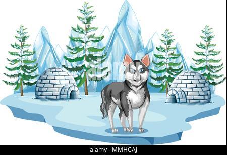 Siberian Husky Dog in Arctic illustration - Stock Photo