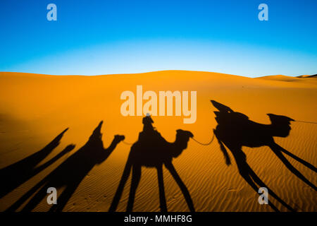 Wide angle shot of caravan traveling and camels shadows on the sand dune in Sahara desert - Stock Photo