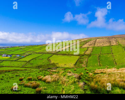 The green hills of Ireland - typical view on Dingle peninsula - Stock Photo