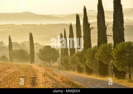 Tuscan landscape in the early morning near the town of San Quirico d'Orcia, town of Pienza in the distance, Province of Siena, Tuscany, Italy - Stock Photo