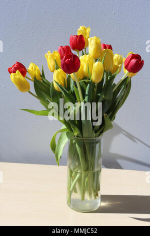 Closeup of red and yellow tulips in a vase. Photographed during a sunny day on a table with white /gray background. Very pretty flowers for the spring - Stock Photo