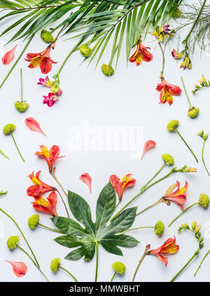 Summer tropical flowers and palm leaves frame on white background, top view, place for text - Stock Photo