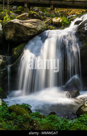 Germany, Sun shining on highest waterfalls of Germany in triberg in black forest - Stock Photo