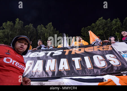 Wests Tigers Fanatics at the Sydney based Wests Tigers v North Queensland Cowboys game at Sydney's Leichhardt Oval on May 10th, 2018 in Australia - Stock Photo
