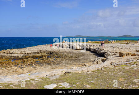 Antigua Lesser Antilles islands in the Caribbean West Indies - Devil's Bridge is a natural rock arch in eastern Antigua and is located on the Atlantic - Stock Photo
