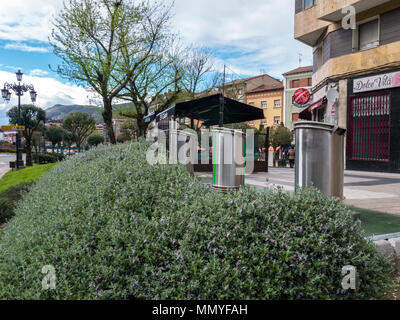 OVIEDO, SPAIN - April 08, 2018:  Separate garbage collection metallic cylindrical bins on the street behind decorative bush hedge, Oviedo, Spain. - Stock Photo